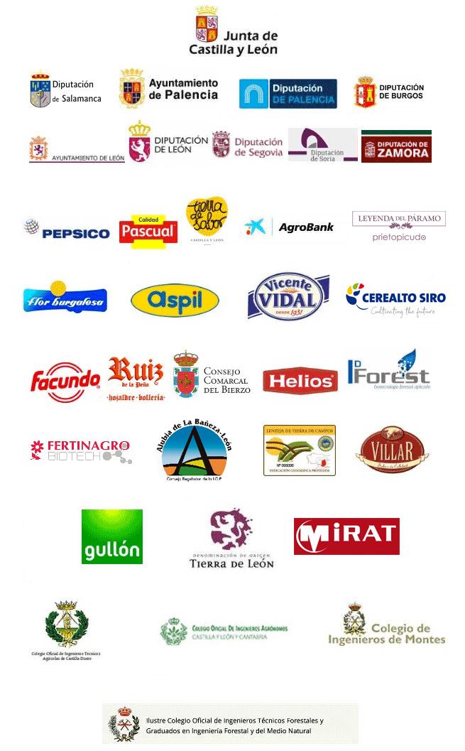patrocinadores2019.jpg